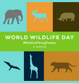 world wildlife day poster with animals silhouette
