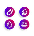 brazil nut vitamin e and water drop icons set vector image vector image
