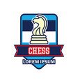 chess logo with text space for your slogan vector image vector image