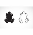 frogs design on white background amphibian animal vector image vector image