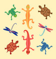 frogs lizards turtles and dragonflies based on vector image vector image