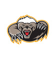Honey Badger Mascot Claw vector image