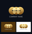 round connect golden technology logo vector image vector image