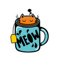 cat in the cup of tea vector image