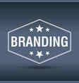 branding hexagonal white vintage retro style label vector image vector image