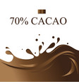 graphics background with chocolate vector image vector image