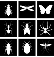 icons insects vector image
