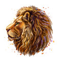 lion artistic color profile portrait a lion vector image vector image