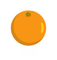 orange icon flat style vector image vector image