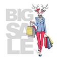 retro hipster animal deer big sale hipster poster vector image vector image