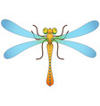 dragonfly isolated object image vector image vector image