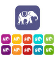 Elephant icons set