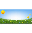 green grass border with flowers and sun isolated vector image vector image