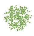 group of young sprouts seedlings pattern vector image vector image