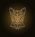 puma head portrait polygonal style vector image vector image