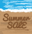Summer sales vector image