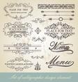 menu calligraphic design element vector image