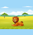 cute lion sitting in jungle vector image vector image
