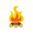 flame and spark bonfire or burning wood vector image
