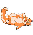 object isolated on white background red cat lying vector image
