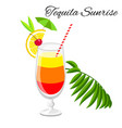 tequila sunrise cocktail isolated on white vector image vector image