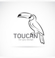 toucan birb design on white background wild vector image vector image
