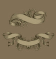 vintage ribbon with flora ornament set vector image