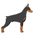 Cartoon of doberman dog