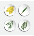 Four species for Jewish Holiday Sukkot vector image vector image