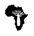 silhouette of black Africa with white baobab vector image vector image