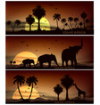africa animal banner for facebook poster vector image vector image