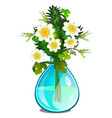 bouquet of white daisies in glass vase vector image