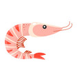 cartoon shrimp isolated on white vector image vector image