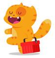 cat shop vector image vector image