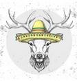 hipster animal deer wearing a sombrero hat vector image vector image