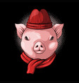 pig head wear beanie and scarf vector image vector image