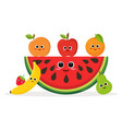 set of fruits and watermelon vector image vector image