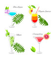 set of popular cocktails decorated with fruit vector image