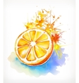 Watercolor painting juicy orange vector image vector image