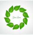Green leaves border vector image
