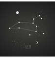 Astrology sign Leo on chalkboard background vector image vector image