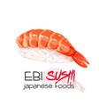 ebi sushi vector image vector image