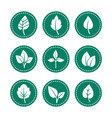 green leaf round icons set vector image