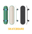 long skateboard bottom side and top view vector image vector image