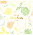 organic citrus fruit banners healthy food vector image vector image
