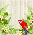Tropical flowers and parrot vector image vector image