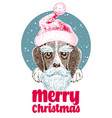 x-mas design greeting card with cute beagle puppy vector image