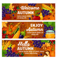 autumn fall harvest and leaves banners vector image vector image