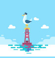 colorful seagull bird on blue calm sea coast vector image