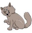 fluffy cat cartoon animal character